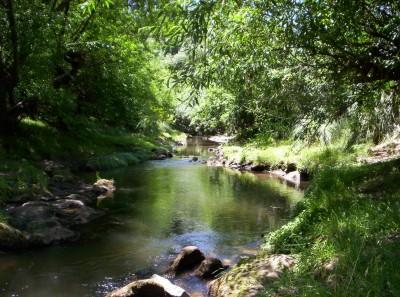 la frescura de los arroyos de Villa Ventana. Imperdible