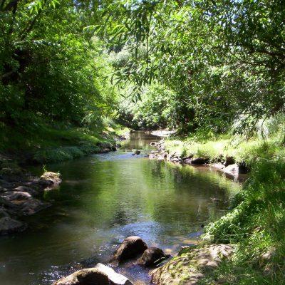 Alójese en cabaña Ayutun Hue y recorra los arroyos de Villa Ventana