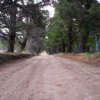 Nada más sano que hacer largas caminatas por las hermosas y a veces empinadas calles de Villa Ventana