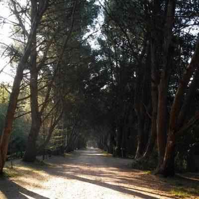 Villa Ventana y sus pintorescas calles de tierra