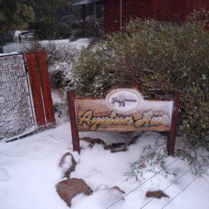 nevada del 2020
