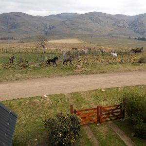 disfruta desde el balcón del dormitorio de la cabaña de paisajes como éste